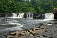 Aysgarth瀑布在北约克郡 库存图片