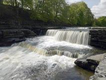 Aysgarth baja en Wensleydale en los valles de Yorkshire Reino Unido fotos de archivo libres de regalías
