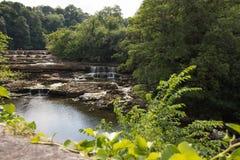 Aysgarth fällt nahe Yore-Mühle in North Yorkshire, wohin der Fluss Ure über Felsenleisten läuft lizenzfreie stockfotos