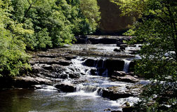 Aysgarth Falls Royalty Free Stock Image
