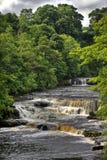 Aysgarth Falls Stock Photo