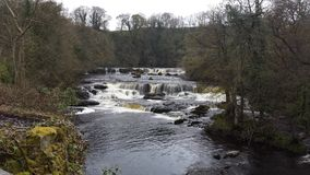 Aysgarth the falls royalty free stock images