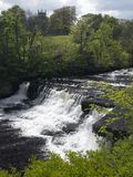 Aysgarth Falls - Wensleydale - Yorkshire Dales Stock Photography