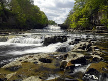 Aysgarth Falls - Wensleydale - Yorkshire Dales royalty free stock images