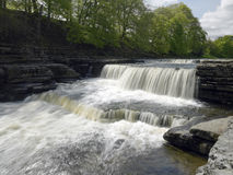 Aysgarth Falls in Wensleydale in the Yorkshire Dales. UK Royalty Free Stock Photos