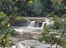 Aysgarth Falls - Yorkshire Dales royalty free stock photo