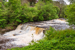 Aysgarth Middle Falls Stock Photography