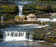 Aysgarth Waterfall Royalty Free Stock Photography
