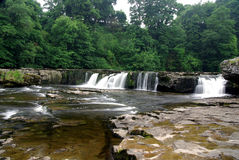 Aysgarth waterfalls England. Beautiful waterfall in the Yorkshire Dales Stock Image