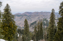 Ayubia国家公园,伊斯兰堡,巴基斯坦 免版税库存图片