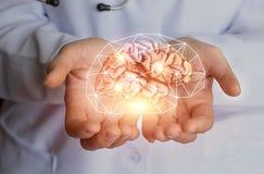 Ayuda sana del cerebro Fotos de archivo libres de regalías
