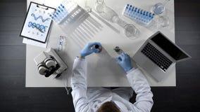 Ayudante de laboratorio que comprueba el producto derivado del petróleo en el frasco, haciendo la mezcla química, visión superior fotografía de archivo