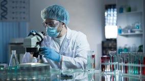 Ayudante de laboratorio que estudia muestras para detectar las patologías, investigación médica de la calidad Fotografía de archivo
