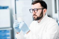Ayudante de laboratorio que trabaja con las bacterias fotografía de archivo libre de regalías