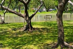 Ayudas del parque a la relajación imagen de archivo libre de regalías