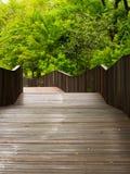 Ayudas verdes del parque a relajarse foto de archivo libre de regalías