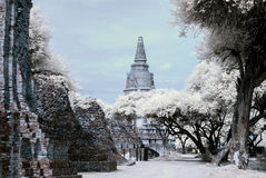 Ayudhaya The Historical park, world heritage of Thailand, shooti. Ng style with filter infrared 72 Stock Photography