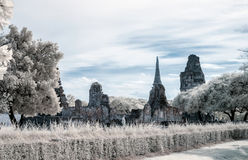 Ayudhaya The Historical park, world heritage of Thailand, shooti. Ng style with filter infrared 72 Stock Images