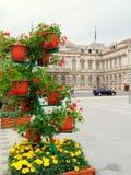 Ayuntamiento Bacau Fotos de archivo