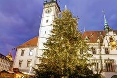 Ayuntamiento de Olomouc con un árbol de navidad grande delante de él Imagen de archivo