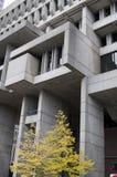 Ayuntamiento en Boston Foto de archivo libre de regalías