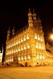 Ayuntamiento en Lovaina - Bélgica - en la noche Foto de archivo