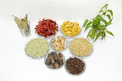 Ayurved. Image of ayurvedic medicine & spice Stock Photography