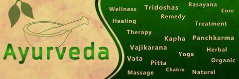 Ayurveda水平绿色的难看的东西 皇族释放例证