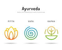 Ayurveda body types 03 Royalty Free Stock Photos