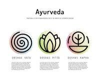 Ayurveda body types. Ayurveda vector illustration doshas vata, pitta, kapha. Ayurvedic body types. Ayurvedic infographic. Healthy lifestyle. Harmony with nature Royalty Free Stock Image