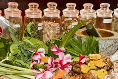 Ayurveda herbs and roots for treatment 2018 royalty free stock photo