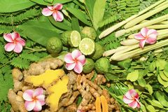 Ayurveda Indian medicine, herbal massage. Bags stock photography
