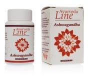 Ayurveda linje Ashwagandha växt- preventivpillerWithania somnifera, Ind royaltyfri bild