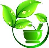 Ayurveda medicine Royalty Free Stock Image