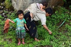 Ayurveda Treatment. An old woman with her grand children collecting leaves for Ayurveda treatment Stock Photography