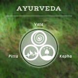 Ayurveda vectorillustratie De types van Ayurvediclichaam royalty-vrije illustratie