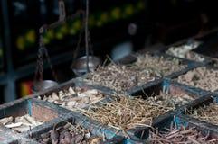 ayurvedaapotek fotografering för bildbyråer