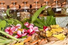 Ayurvedakruiden en wortels voor behandeling 2018 royalty-vrije stock fotografie