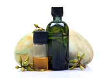 ayurvedic butelek eukaliptusowy olej Obrazy Stock