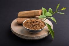 Ayurvedic chandan lape eller lep- eller sandelträdeg royaltyfri fotografi