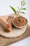 Ayurvedic chandan lape or lep or sandalwood paste. Ayurvedic Chandan powder or sandalwood paste in silver bowl with sticks and leaves placed over sahan or sahana Stock Images