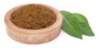 Ayurvedic henna leaves with paste Royalty Free Stock Photography