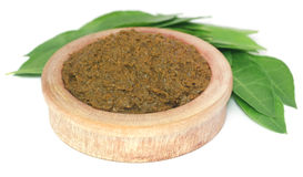Ayurvedic henna leaves with paste Stock Images