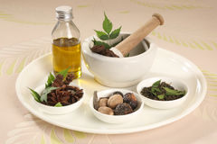 Ayurvedic Herbs with Mortar and Pestle Royalty Free Stock Images