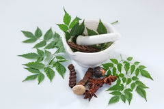 Ayurvedic Herbs with Mortar and Pestle Royalty Free Stock Photos
