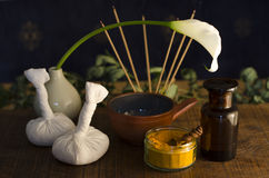 Ayurvedic krydda, olja och masserahjälpmedel Royaltyfri Bild