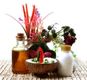 Ayurvedic massage Royalty Free Stock Photo