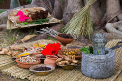 Ayurvedic Medicine Royalty Free Stock Photo