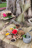 Ayurvedic Medicine Stock Photography