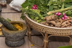 Ayurvedic medicine, the manufacture of herbal bags stock images
